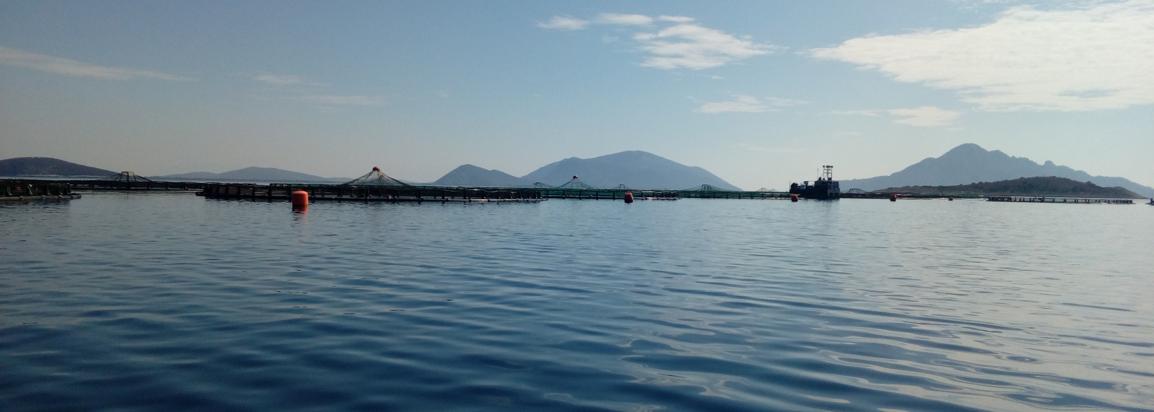 Strategic Spatial Planning to Establish Allocated Zones for Aquaculture (A.Z.A.)