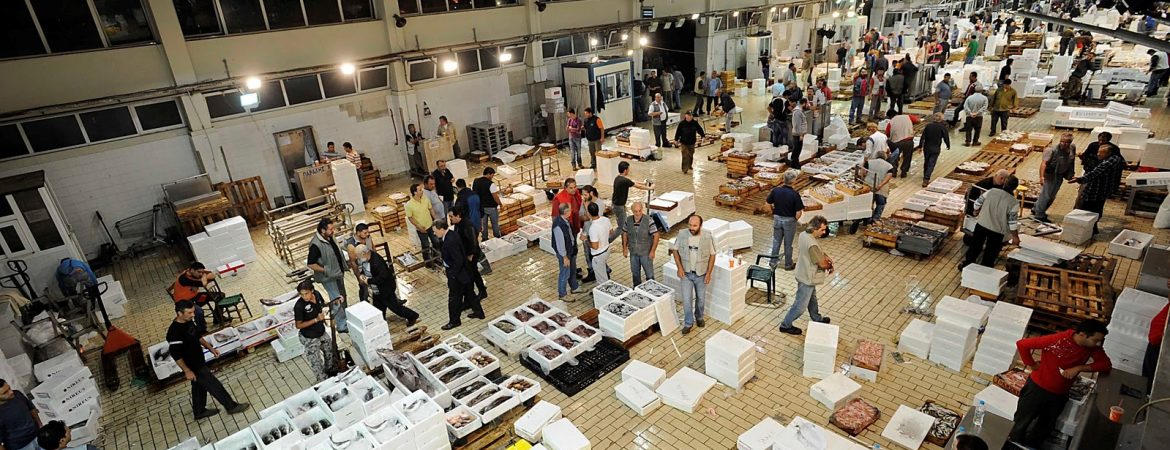 Reorganization of the Fish Auction Market Facilities and Infrastructure