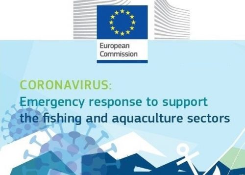 DG MARE INFORMATION NOTE: Coronavirus emergency response to support the fishing and aquaculture sectors