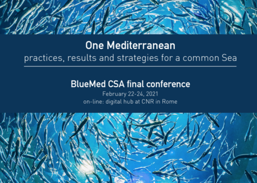 BlueMed Conference 2021