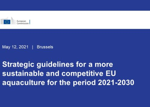 The European Commission has adopted the Communication Strategic guidelines for a more sustainable and competitive EU aquaculture for the period 2021-2030